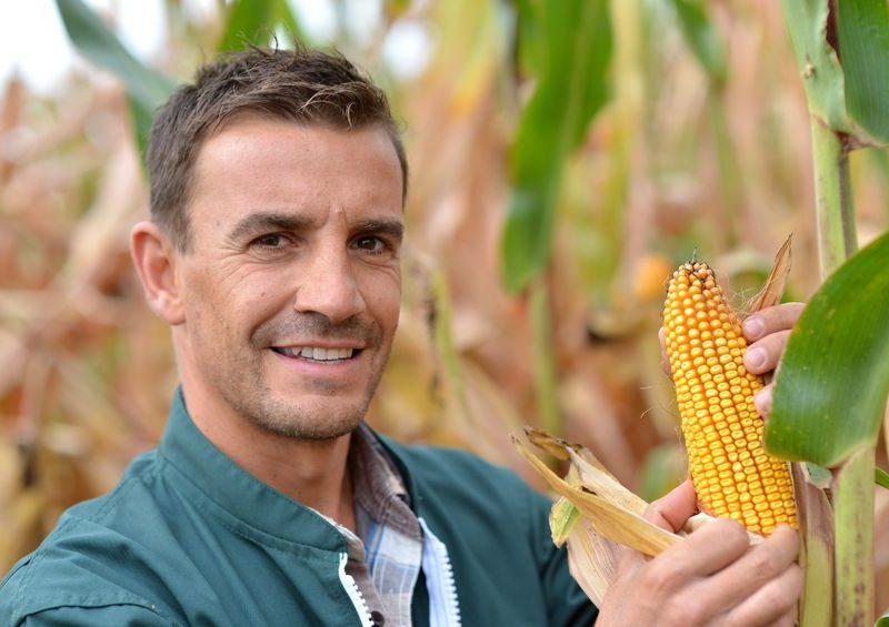 Az aranykalászos gazda tanfolyam után átfogó tudással rendelkezel a zöldségek és gyümölcsök gondozásáról.